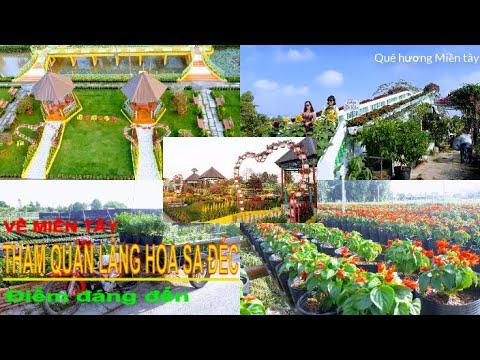 Tour Làng Hoa Sa Đéc- Vườn Quýt Hồng