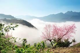 Tour Vân Đồn- HạLong- SaPa 4n3d TN